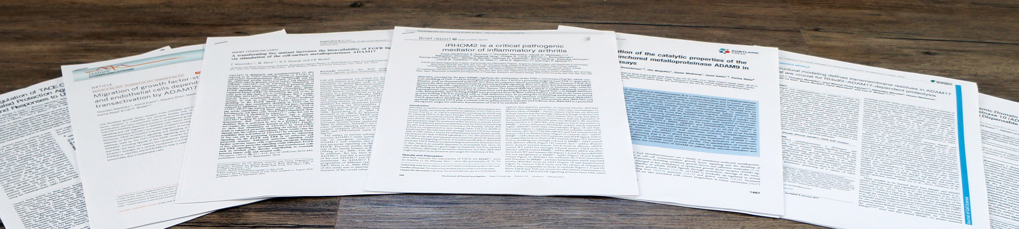 Table of Representative Journal Articles